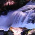 Tumwater Falls by Lady  Dezine