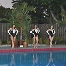 The Miami Dolphinettes .... by Danceintherain