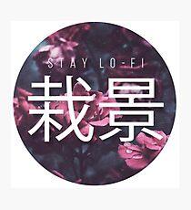 Saikei - Stay LOFI Photographic Print