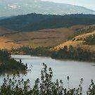 Reservoir by Meladana