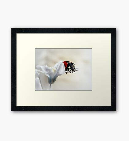 I am thinking about leaving Framed Print