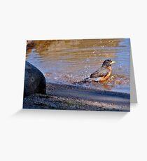 Splish Splash ...  Greeting Card