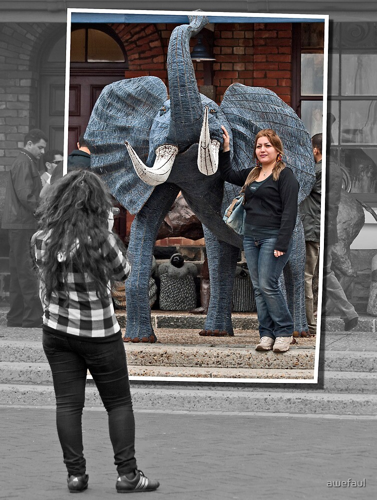 With the wired elephant by awefaul