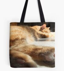 Stretched Out In The Sun Tote Bag