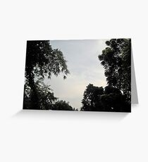 Alone with Naure Greeting Card