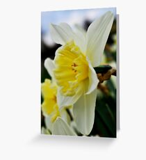 Easter Is Near Greeting Card