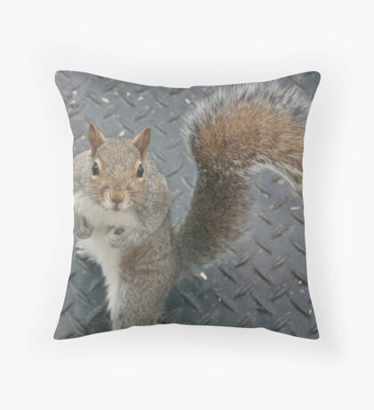 I want more!  Now! Throw Pillow