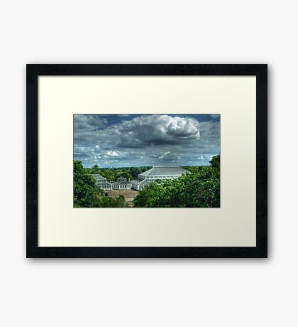 Temperate House Kew Gardens From Treetop Walkway Framed Print