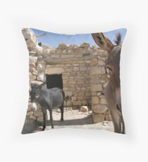 Goldilocks in the Middle East Throw Pillow