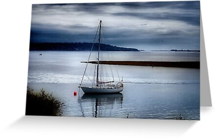 Shimmering Sea by naturelover