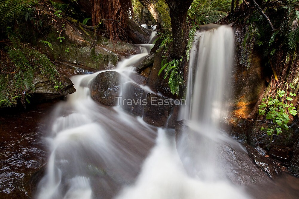 Julie Anne Cascades by Travis Easton