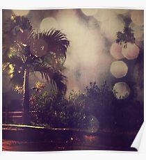Palm tree and the night Poster