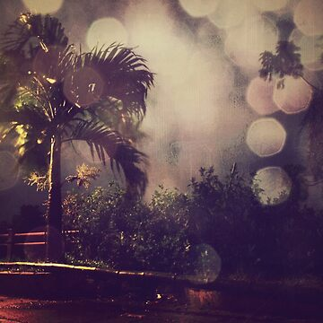 Palm tree and the night by Yives