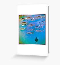 Flight of Fish Greeting Card