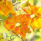 Clematis - yellow and orange by Tummy Rubb Studio