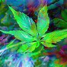 Bright Leaf by Tummy Rubb Studio