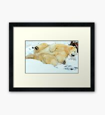 It's a tough life being a single parent Framed Print