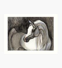 grey arabian horse painting Art Print