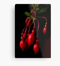 red on black Metal Print