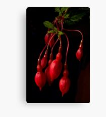 red on black Canvas Print