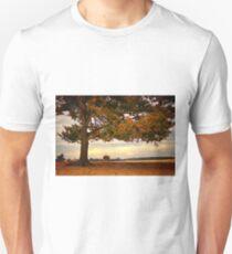 In the Shadow of a Tree - Aekingerzand T-Shirt