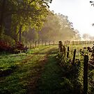 Cades Cove Morning, HDR by Douglas  Stucky