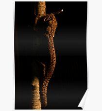 Reptilian Stalker Poster