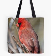 A Pause In Performance Tote Bag