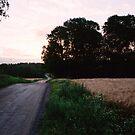 Sunrise by prema