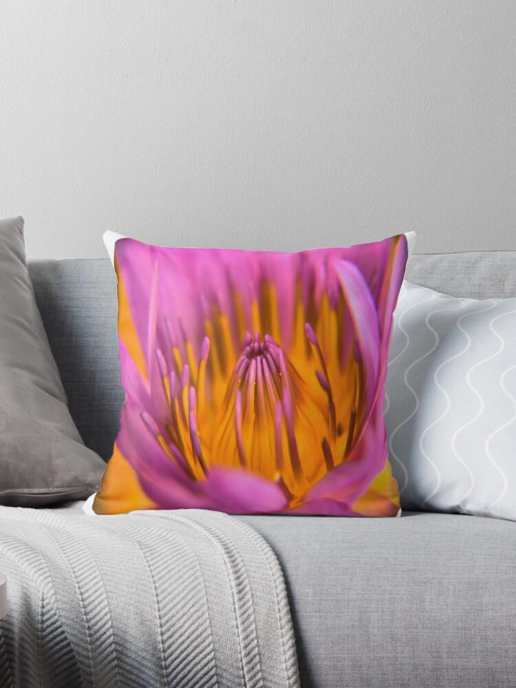 Sri Lankan Lotus Flower by Benedict Middleton