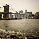 The Brooklyn Bridge, A Riverfront View by Vivienne Gucwa