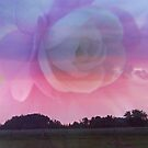 Flower Rays and Clouds by MaeBelle