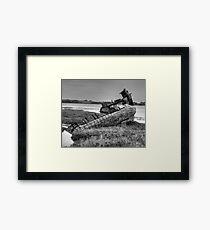 Beached Whale - Fleetwood Marsh, Blackpool Framed Print