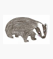Mrs Badger Photographic Print