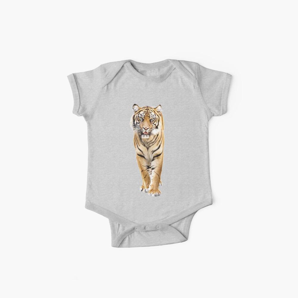 Tiger Bodies para bebé