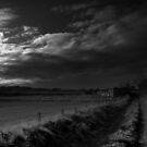 Nearly Dark... by DoreenPhillips