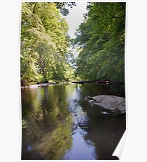 River Dart near Buckfastleigh Poster