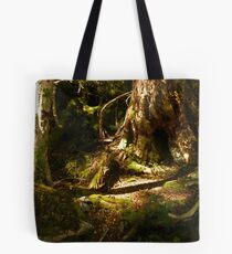 Archaic Beech Forest - Routeburn Track, Fiordland and Mount Aspiring National Parks.  Tote Bag