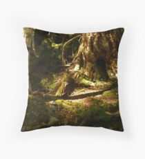 Archaic Beech Forest - Routeburn Track, Fiordland and Mount Aspiring National Parks.  Throw Pillow