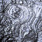 Water Dance by Tom Vaughan