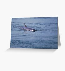 Come on in! The water's fine! Greeting Card