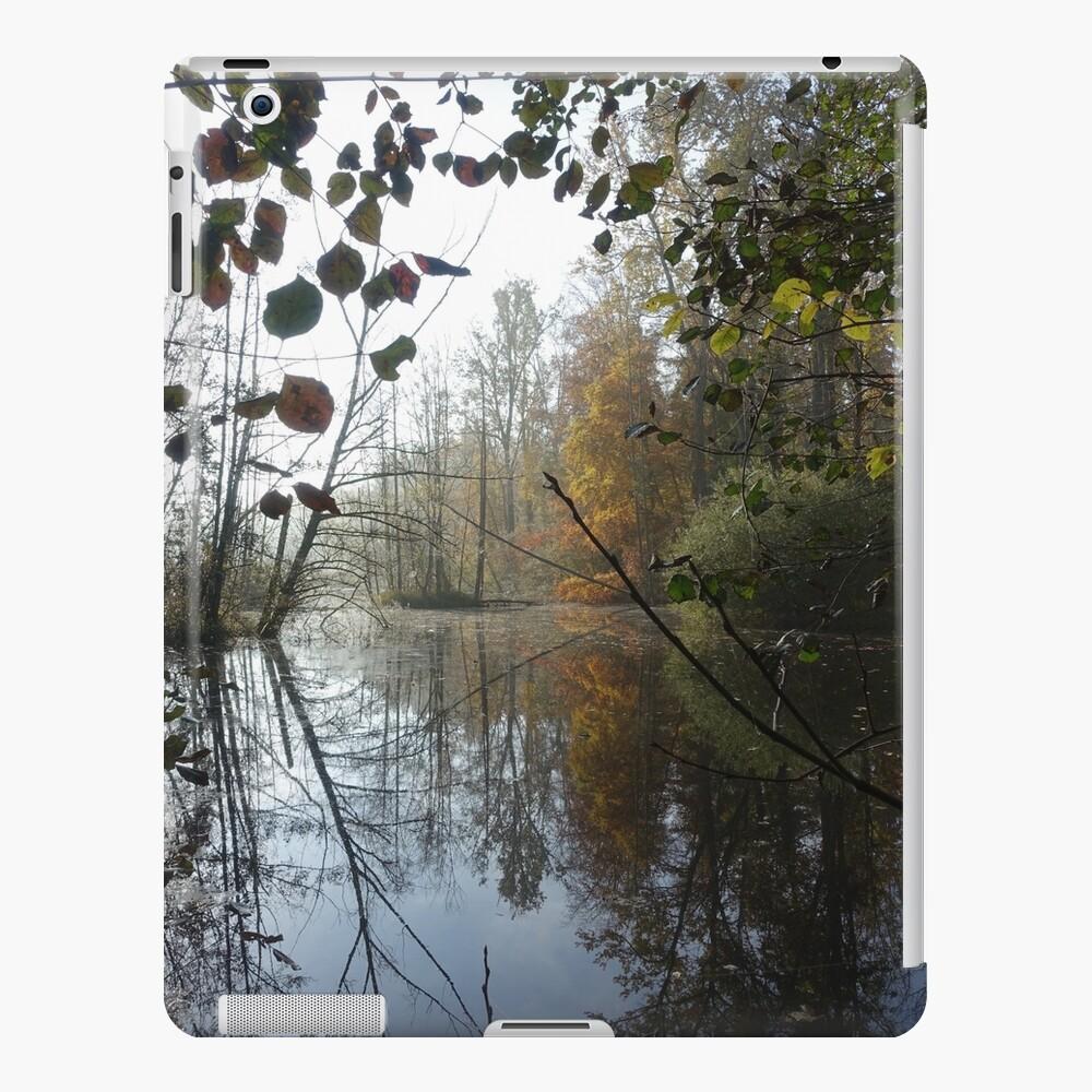 Hidden lake iPad Case & Skin
