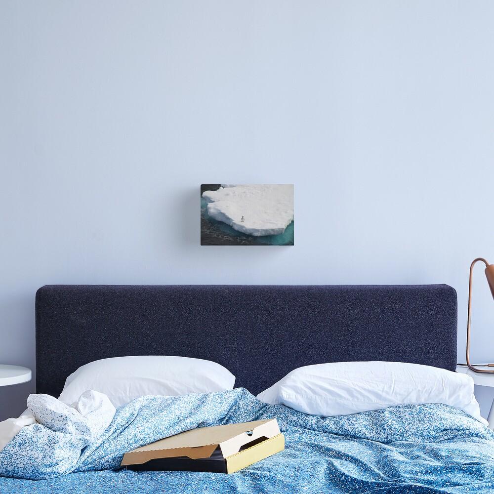 The Lone Penguin Canvas Print