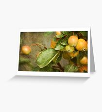 ~ Fruits of Autumn ~ Greeting Card