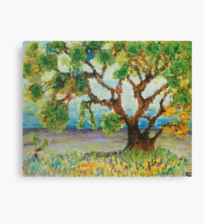 Meadow tree Canvas Print