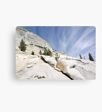 Olmsted Uprise Canvas Print