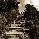 Orlock Point Steps by ragman
