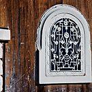 The window in the door by Wanda Staples