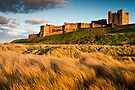 Bamburgh Castle, Northumberland. UK by David Lewins