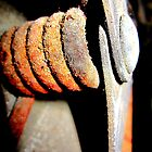 Rusted Hinge by Melissa Ann Blair